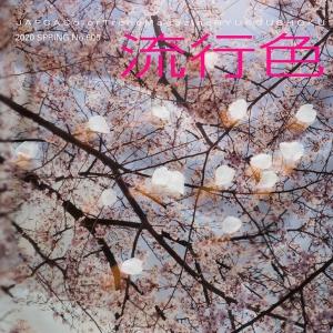 季刊「流行色」2020年春号no.600
