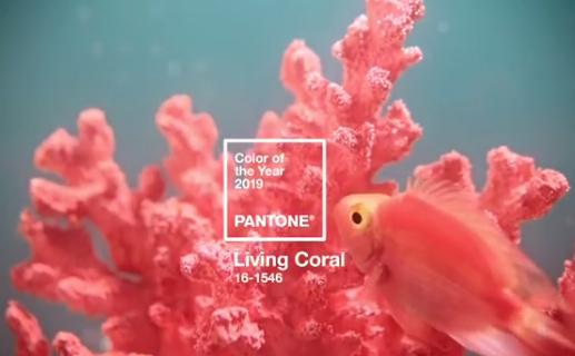 """""""PANTONE 16-1546 Living Coral"""""""