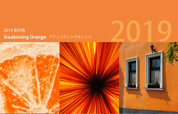 "JAFCA   ""AWAKENING ORANGE"""